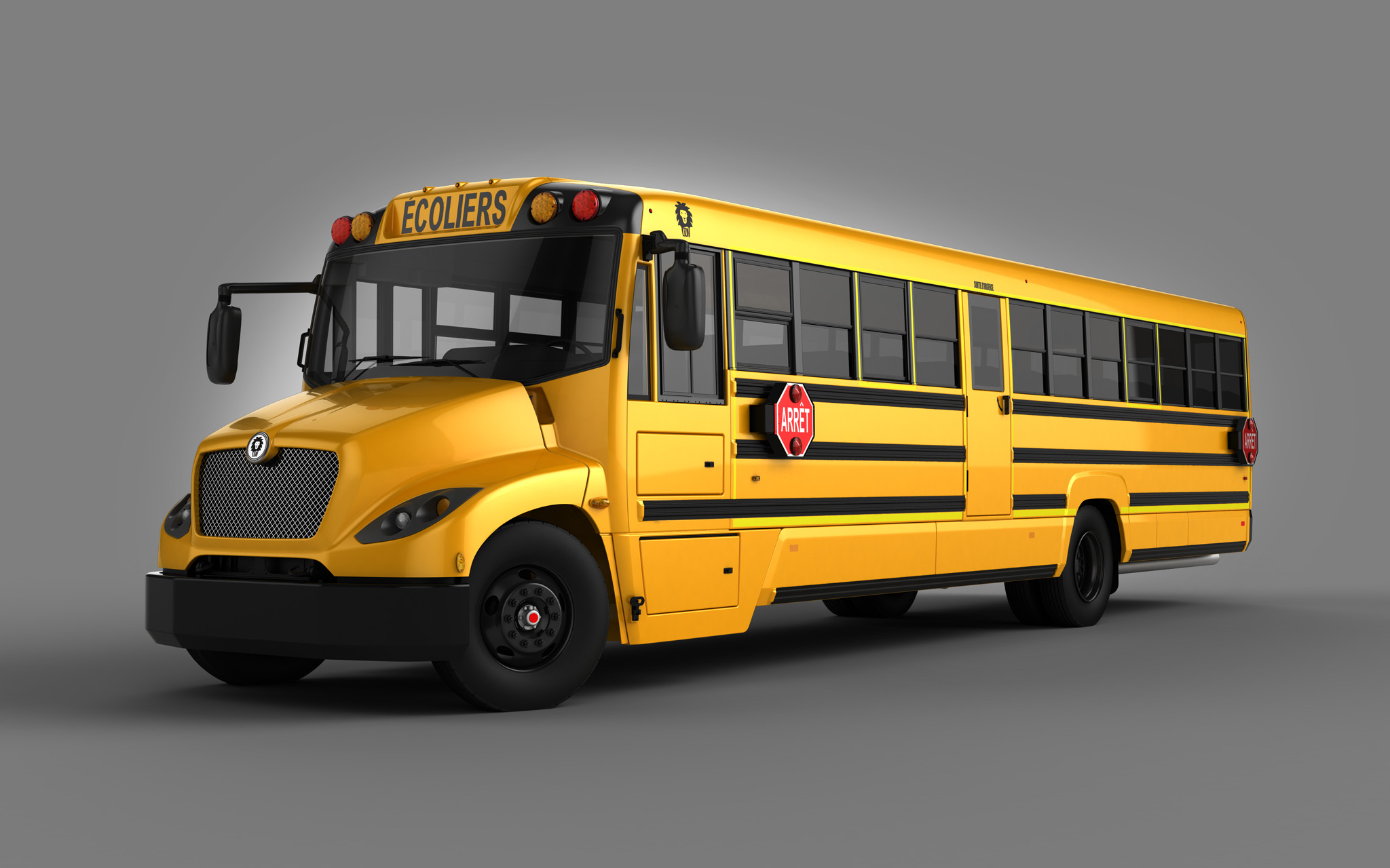 Lion Bus Type C School Bus
